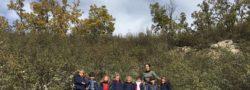 recogida de castañas en el chortalillo nov 19 (4)